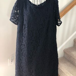 Ann Taylor Lined Lace Dress